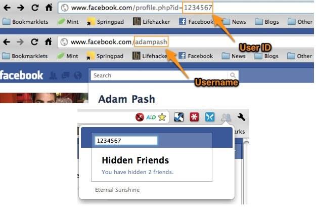 Nakładka do przeglądarki Google Chrome Eternal Sunshine /gizmodo.pl