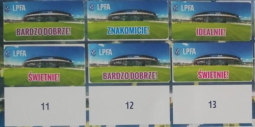 Naklejki motywacyjne zbierane na plakat przez młodych piłkarzy Lecha Poznań (LPFA) /Bartosz Nosal /archiwum prywatne