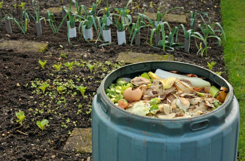 Należy odpowiednio układać warstwy kompostu /123RF/PICSEL