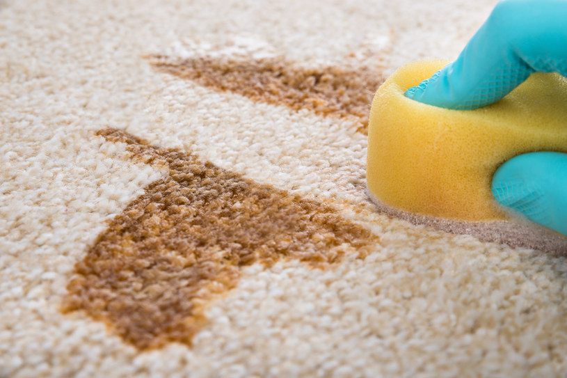 Należy uważać, by zbytnio nie zmoczyć dywanu /123RF/PICSEL