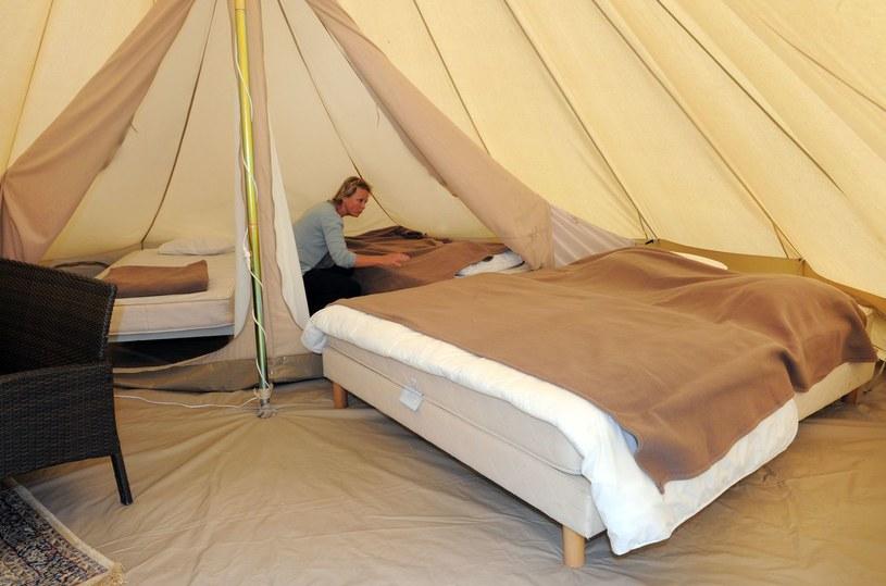 Namioty mogą wrócić do łask?