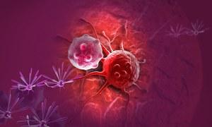 Nanocząstki sterowane polem magnetycznym - nowy sposób na raka