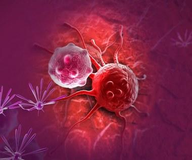Nanodiamenty zniszczą rakowe komórki macierzyste