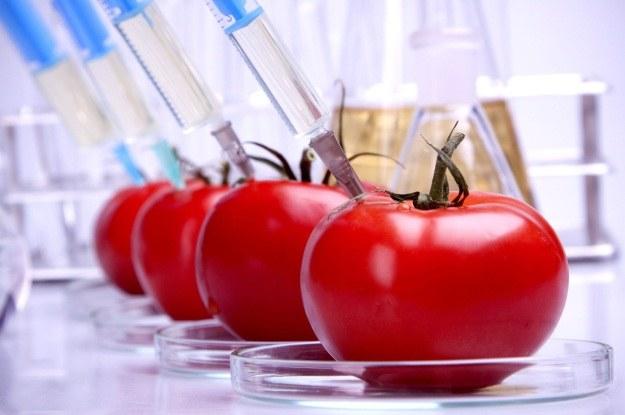Nanotechnologia w żywności budzi więcej kontrowersji niż GMO /123RF/PICSEL