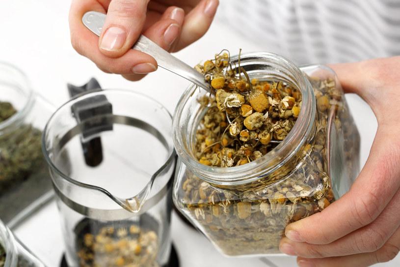 Napar z rumianku to jedna z domowych metod zaprawiania cebulek kwiatów /123RF/PICSEL