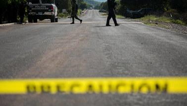 Napaść na rodzinę mormonów w Meksyku. 9 osób zginęło, niektórzy spłonęli żywcem