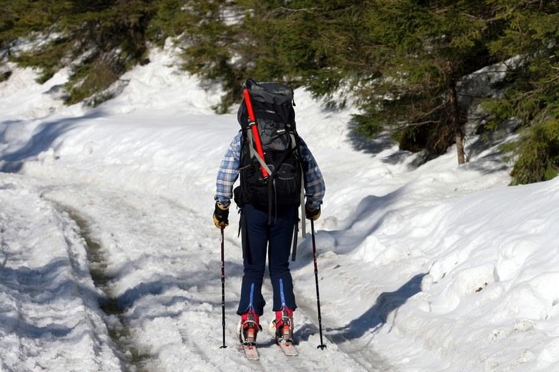 Narciarz w Dolinie Chochołowskiej /Anna Kaczmarz /Reporter