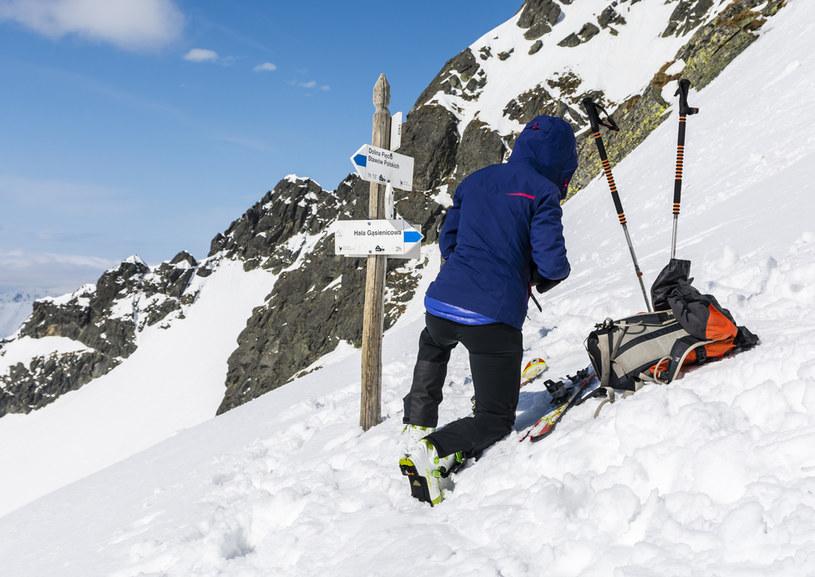 Narciarz w Tatrach /123RF/PICSEL