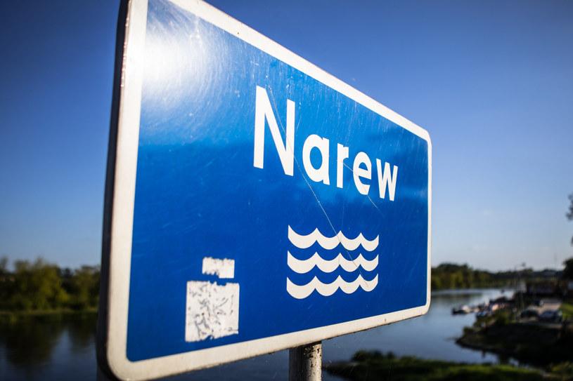 Narew; zdj. ilustracyjne /Adam Burakowski /Reporter