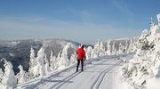 Narty biegowe: Najlepsze miejsca w Czechach