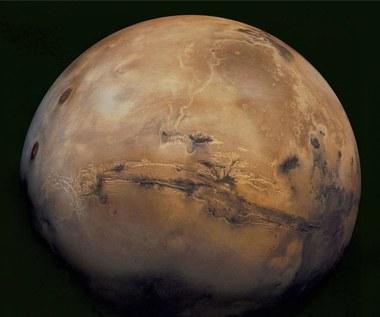 NASA: Na Marsie odnaleziono wodę w stanie ciekłym