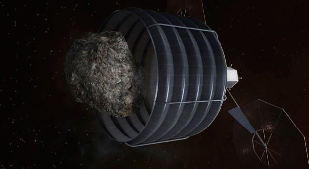 NASA powinna udać się na większą asteroidę /NASA