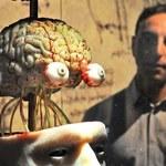 Nasi praprzodkowie mieli większe mózgi!
