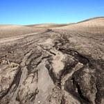 Nasi przodkowie istotnie wpływali na środowisko już 4000 lat temu