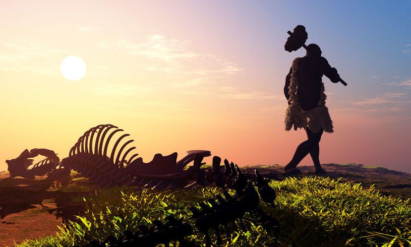 Nasi przodkowie z powodzeniem nauczyliby się zabijać dinozaury /123RF/PICSEL