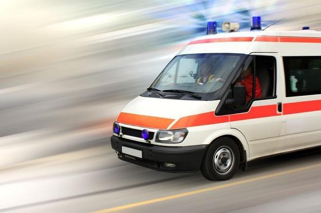 Nastąpił paraliż procesu homologacji pojazdów specjalistycznych /©123RF/PICSEL