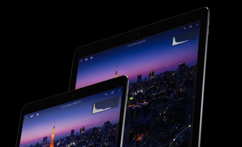 Następna generacja iPadów zadebiutuje na  WWDC 2018 /materiały prasowe