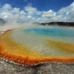 Naszą pogodę mogą kształtować bakterie