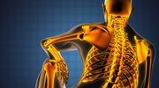 Nasze kości żyją! Pięć ciekawostek o ludzkim szkielecie
