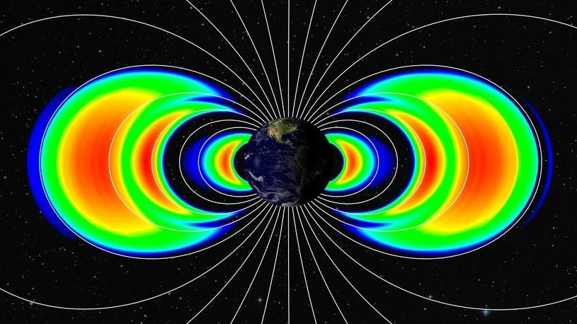 Nasze mózgi mogą różnie reagować na ziemskie pole magnetyczne /materiały prasowe