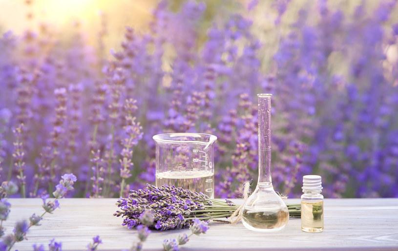 Naturalne substancje występujące w roślinach dobrze radzą sobie z zarazkami /123RF/PICSEL