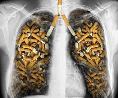 Naturalny sposób oczyszczenia płuc z nikotyny
