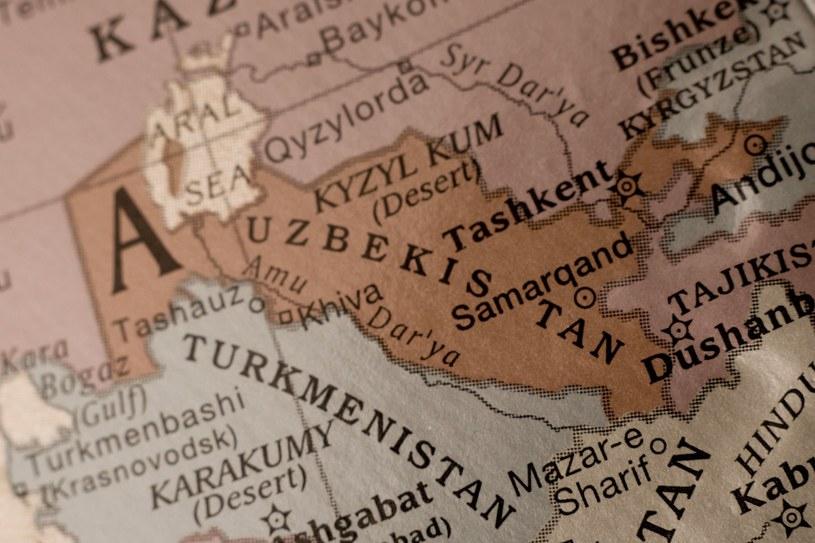 Nauczyciele w Uzbekistanie dostają pensje w kurczętach... /123RF/PICSEL
