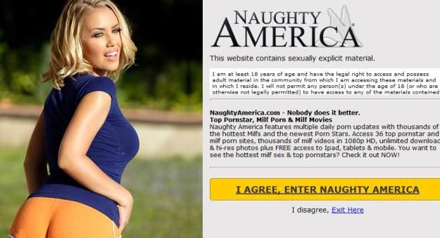 Naughty America - kolejny producent filmów XXX, który stawia na jakość 4K /materiały prasowe