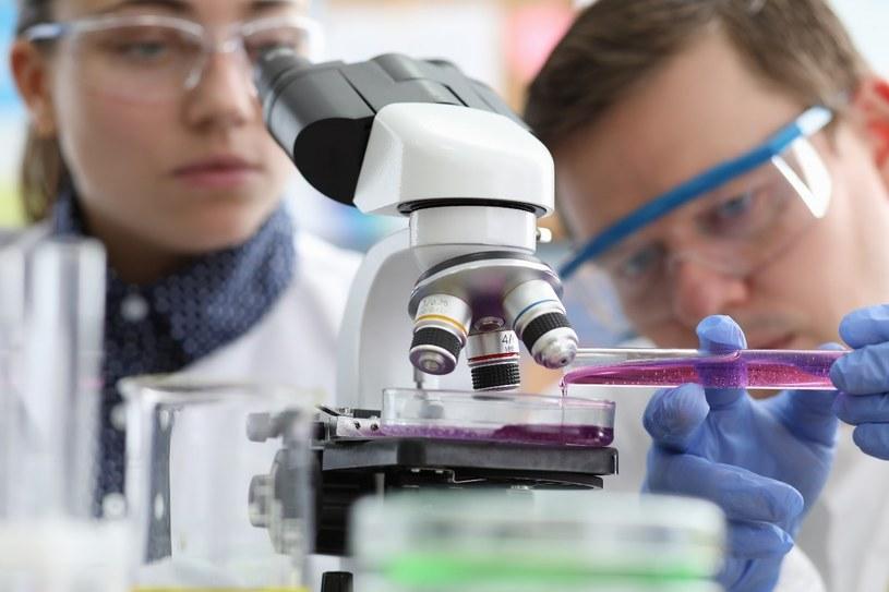 Nauka naprawdę może zrewolucjonizować medycynę /123RF/PICSEL