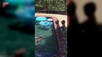 Nauka pływania w wykonaniu bliźniaków