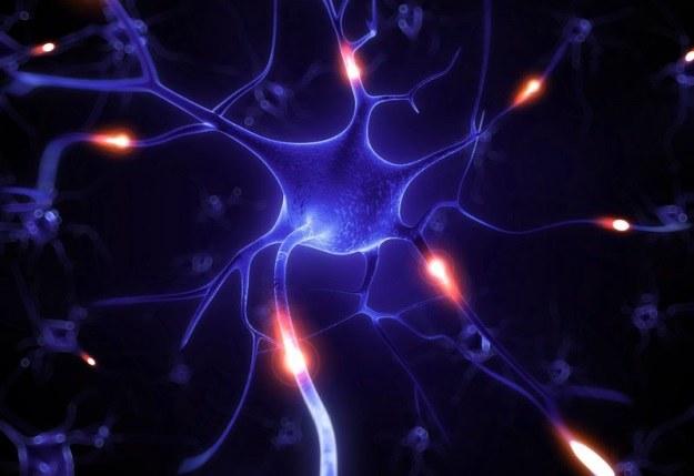Naukowcom udało się opanować złośliwy nowotwór osłonek nerwów obwodowych /123RF/PICSEL