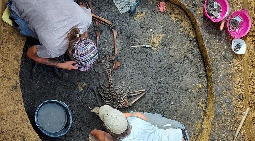 Naukowcom udało się ustalić nie tylko wiek szczątków (od 2100 do 2500 lat), ale i prawdopodobną przyczynę zgonu chłopca /BLFD/Real Press /East News