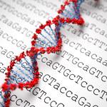 Naukowcy chcą stworzyć syntetyczne ludzkie DNA