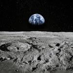 Naukowcy chcą uprawiać rośliny na Księżycu. Dlaczego?