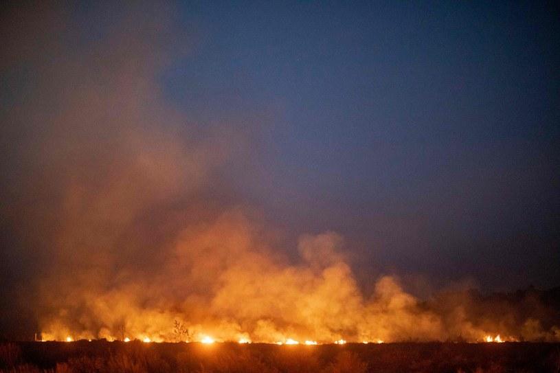 Naukowcy: Czeka nas klimatyczny stan wyjątkowy /AFP