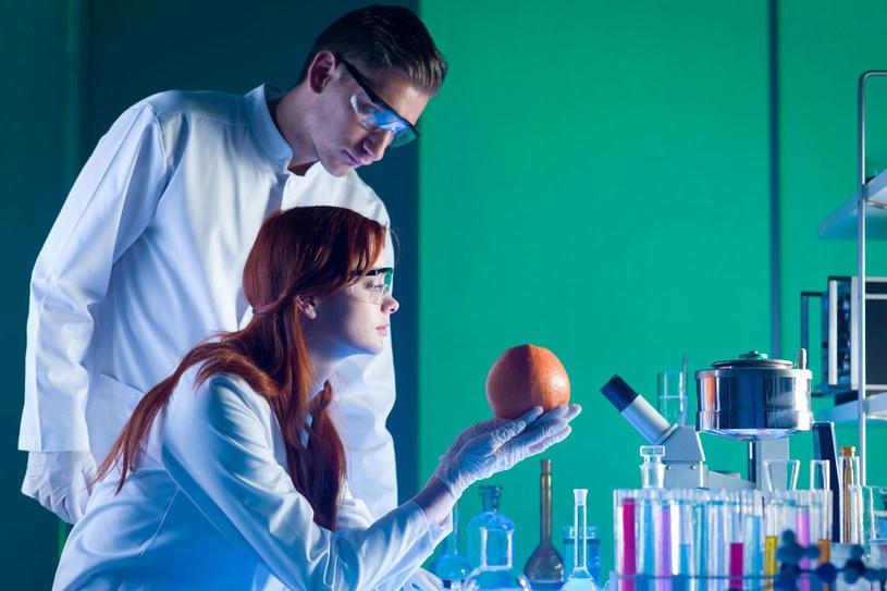 Naukowcy dążą do tego, aby narządy do przeszczepów pochodziły z hodowli, a nie od dawców /123RF/PICSEL
