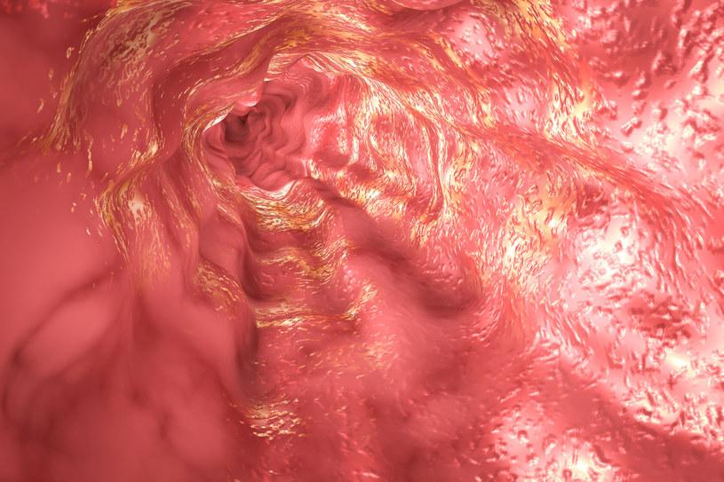 Naukowcy dowiedli, że wrzący napar jest bardzo szkodliwy dla przełyku /123RF/PICSEL