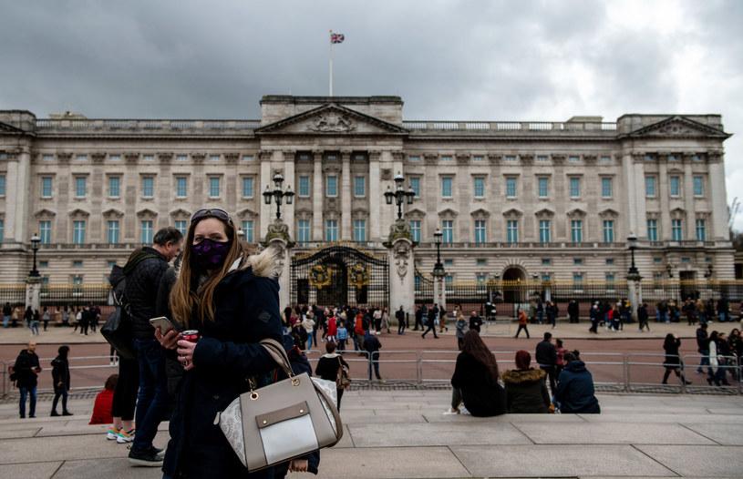 Naukowcy krytycznie podchodzą do działań rządu Wielkiej Brytanii /CHRIS J RATCLIFFE /Getty Images