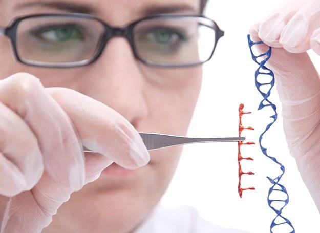 Naukowcy muszą wykonać jeszcze wiele badań, by odrzucić wszelkie wątpliwości dotyczące chromosomu Y /© Panthermedia