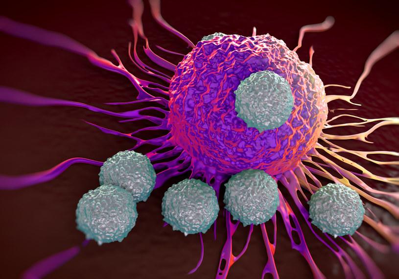 Naukowcy opracowali nowy sposób zwalczania nowotworów /123RF/PICSEL