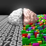Naukowcy potwierdzają - lek na narkolepsję zwiększa inteligencję