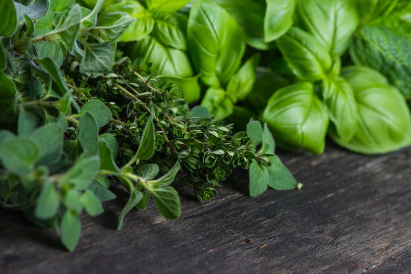 Naukowcy potwierdzają: zioła mogą zapobiegać procesom starzenia /123RF/PICSEL