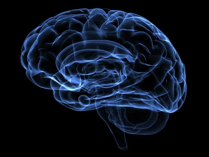 Naukowcy przekonują, że wykorzystujemy więcej niż 10 proc. mózgu /123RF/PICSEL