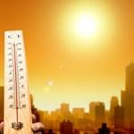 Naukowcy przepowiadają najgorętsze lato w historii