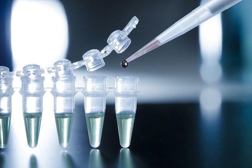 Naukowcy stworzyli nowy typ komórek macierzystych /123RF/PICSEL