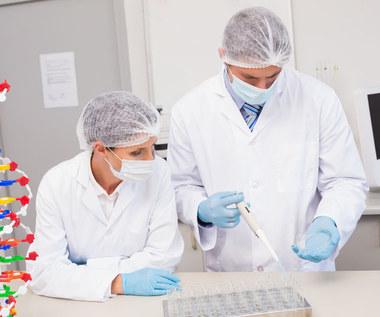 Naukowcy wydrukowali miniaturową wątrobę i serce