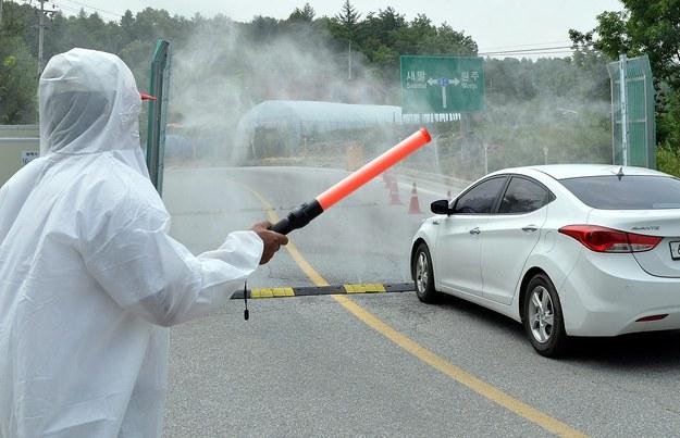 Naukowcy wyhodowali groźnego wirusa grypy