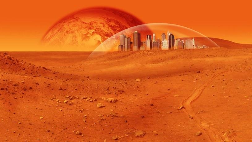 Naukowcy z Olsztyna rozwijają rośliny, które wyrosną na Marsie (fot. ilustracyjne) /123RF/PICSEL