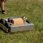 Naukowcy z Wrocławia skonstruowali robota, który wyłapuje kleszcze