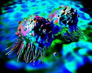 Naukowcy zamienili nowotwór w zdrowe komórki